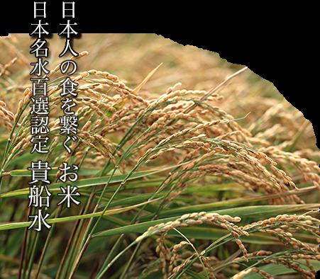 日本人の食を繋ぐお米。日本名水百選認定 貴船水